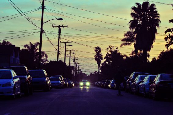 Cars And Palm Trees Lining A Street At Sunset